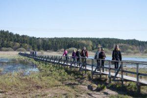 Birdwatchers on day trip from Stockholm