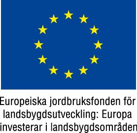eu flag european agricultural fundfac88rg