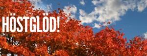Sprakande Höstglöd 8 & 9 oktober