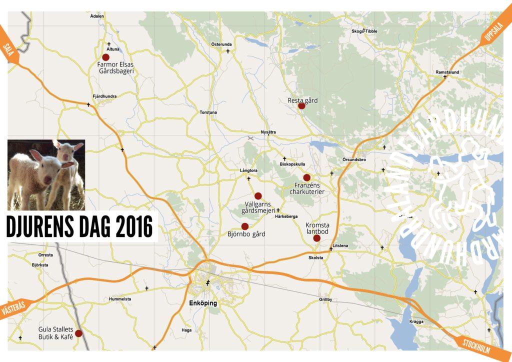 Map Animal day