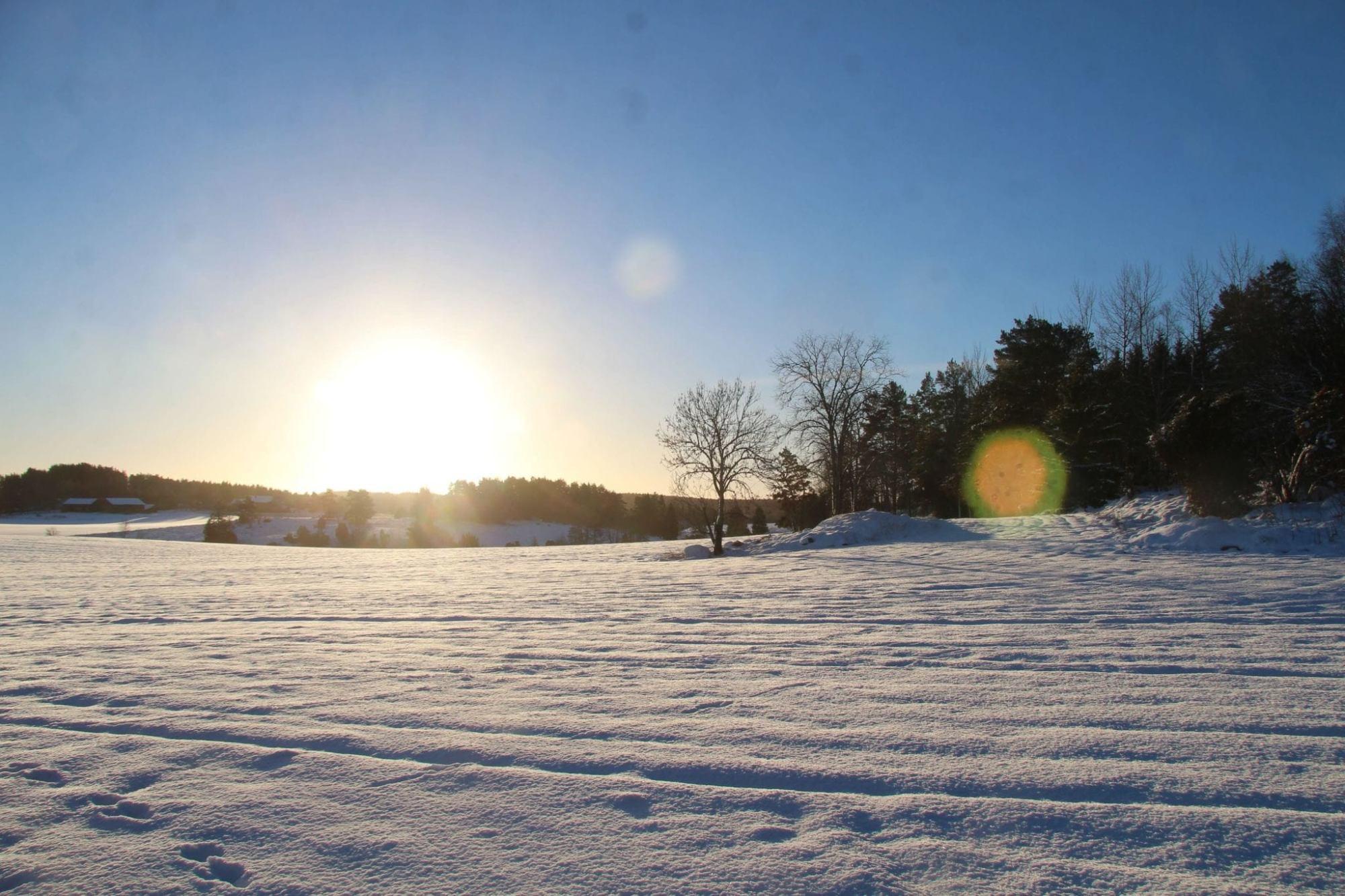 Snow and sun, backlight in Fjärdhundraland