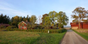 Blåsbo