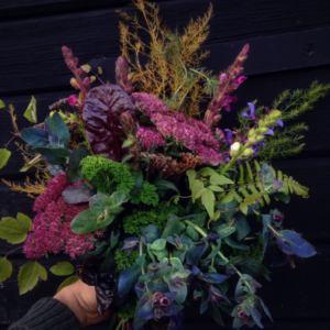 Svartbäckens trädgård