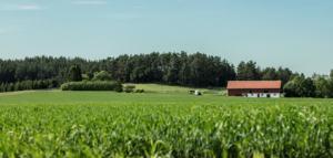 Living agricultural landscape
