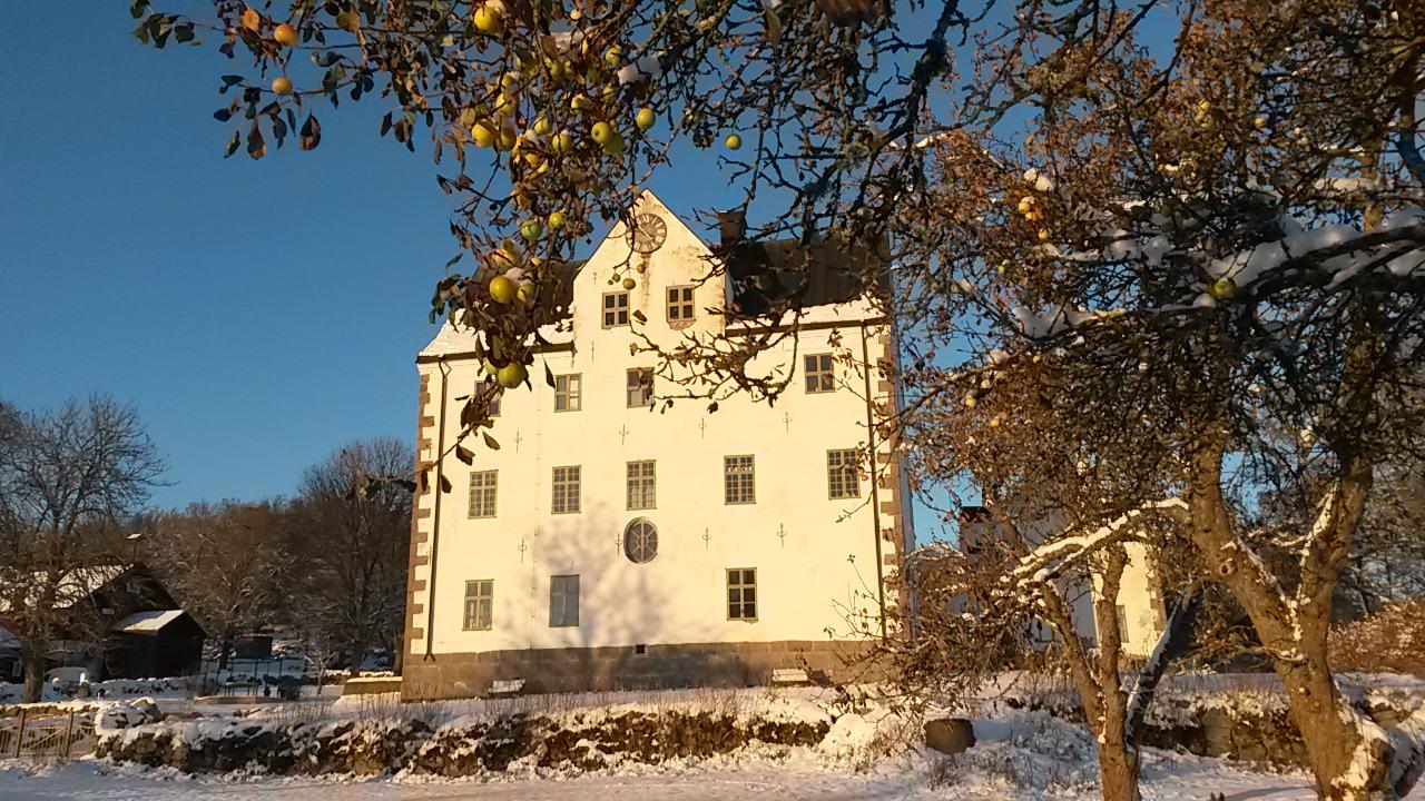 Salnecke slott från slottsträdgården